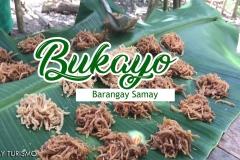 BUKAYO_1